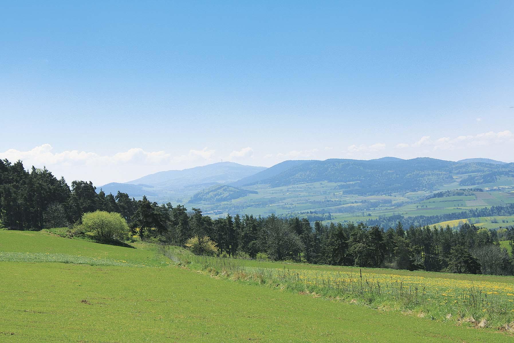 Paysage des Hauts-Plateaux du Velay