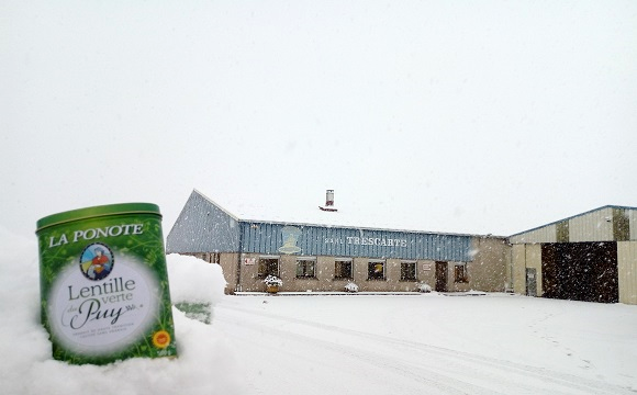La ponote sous la neige